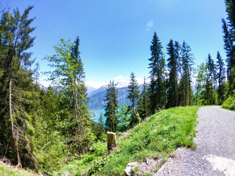 la montagna del Niederhorn nell'Oberland Bernese