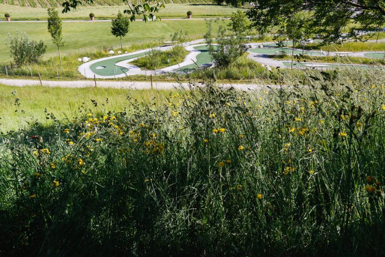 Il campo di minigolf a Spiez