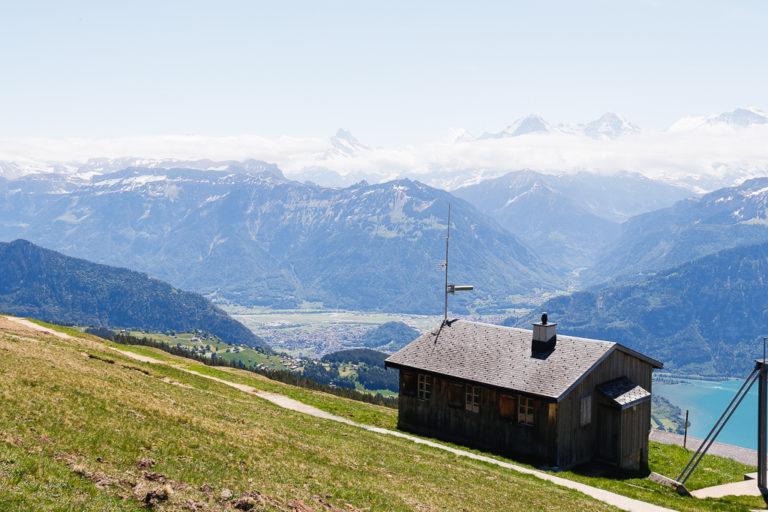 Vista dal Niederhorn sull'Eiger, Mönch e Jungfrau