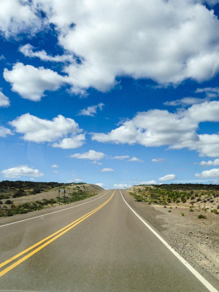 La lunga strada che conduce a Punta Tombo